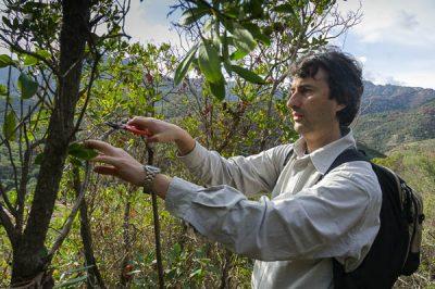 LIPU Conservation Director